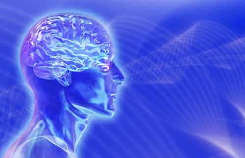Πέντε μύθοι για τον ανθρώπινο εγκέφαλο