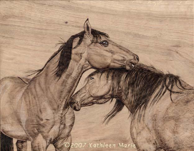 horses_tomboy_cimarron