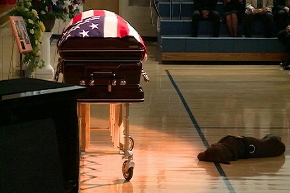 Σκυλί σκοτωμένου Αμερικανού στρατιώτη στο Αφγανιστάν, ξαπλώνει δίπλα στο φέρετρο του.
