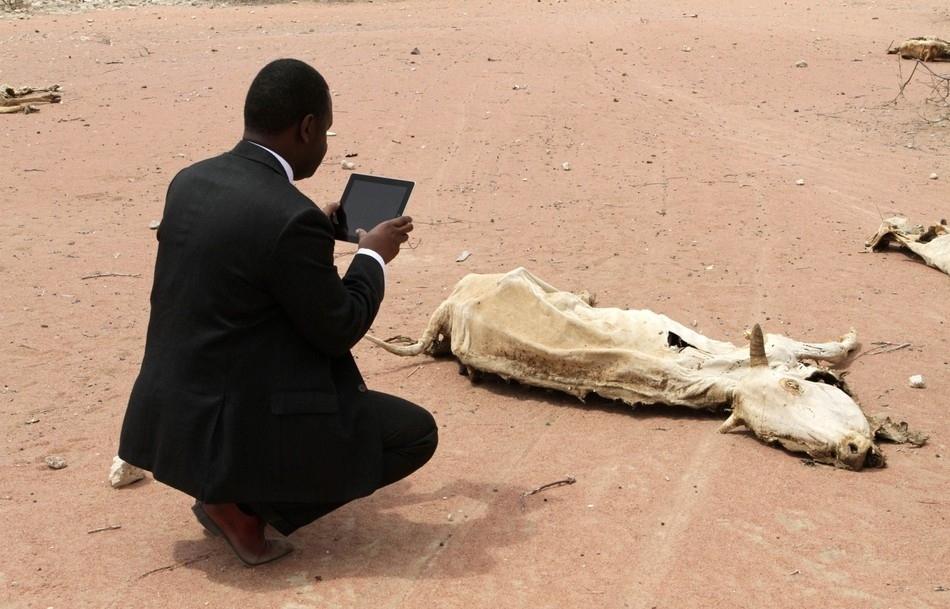 Εργαζόμενος πρώτων βοηθειών, χρησιμοποιώντας ένα iPad φωτογραφίζει το πτώμα μιας αγελάδας κοντά στην Κένυα.