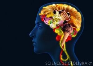 C0068483-Brain_food,_conceptual_image-SPL