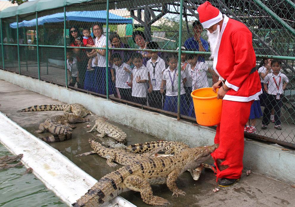 Άγιος Βασίλης σε  μια φάρμα κροκοδείλων στη Μανίλα, Φιλιππίνες