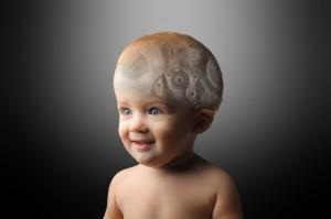 babys-brains