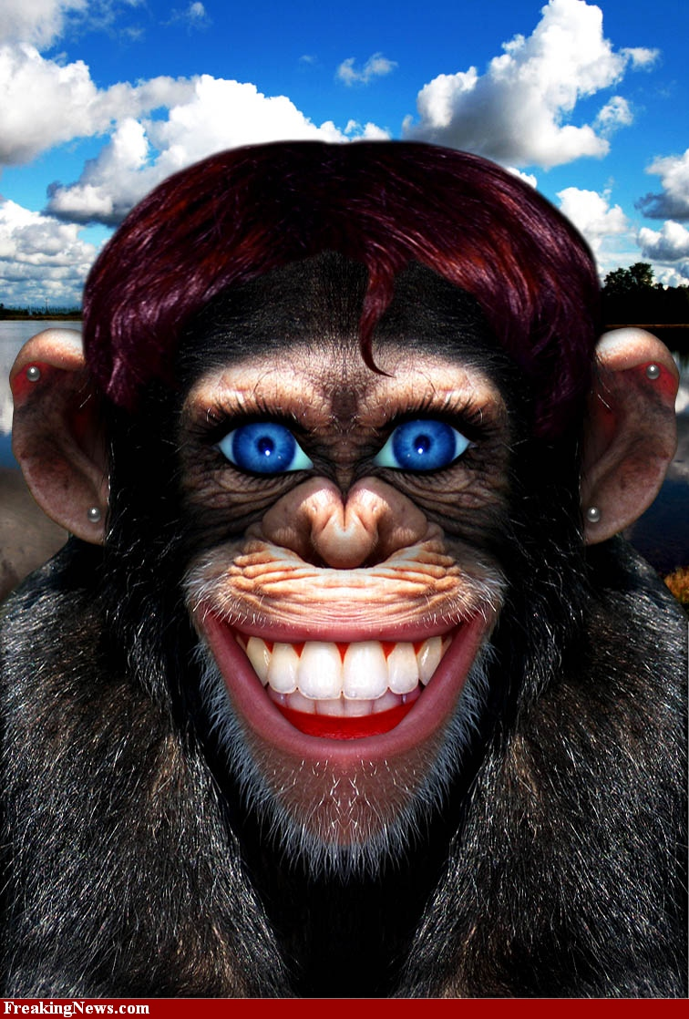 Crazy-Monkey-With-Human-Face-57639