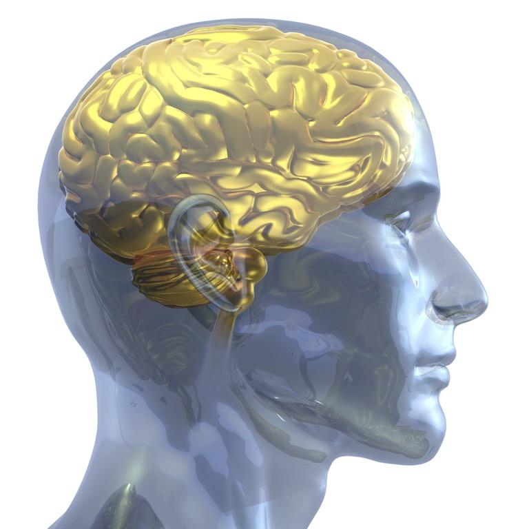 Alphonse Daudet - Το χρυσό μυαλό