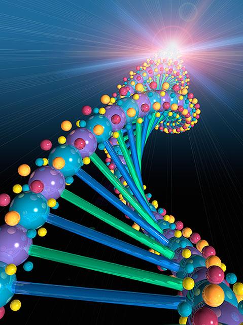 Gene-DNA1