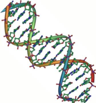 selfish-gene-1