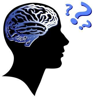 brain_memory
