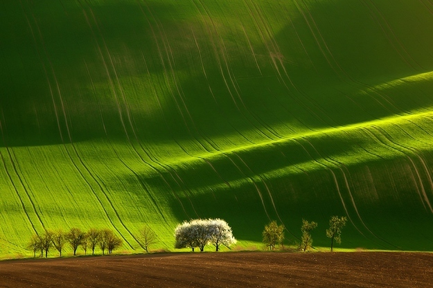 Moravia, Τσεχία