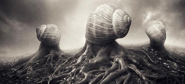 surreal-photo-manipulations-sarolta-ban-thumb640