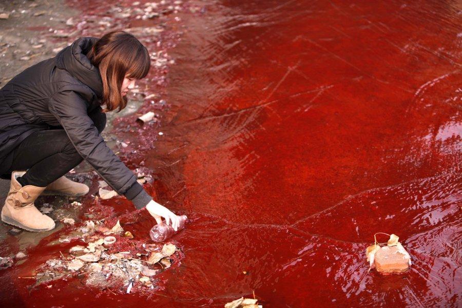 Δημοσιογράφος συλλέγει δείγμα κόκκινου νερού από ένα κινεζικό ποτάμι, πιθανώς μολυσμένου από δύο κοντινά παράνομα εργοστάσια.