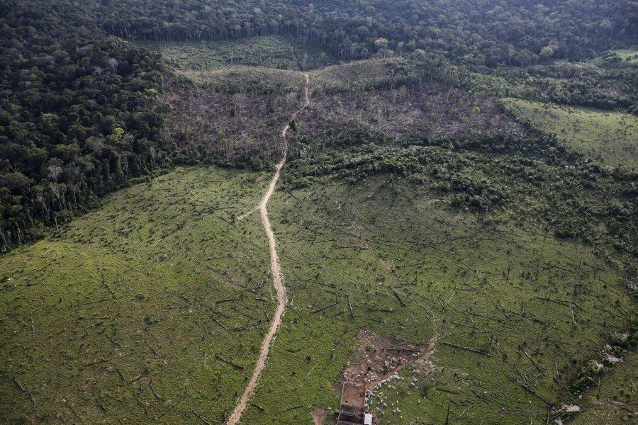 Αεροφωτογραφία δείχνει τα αποτελέσματα της παράνομης αποψίλωσης των δασών στη Βραζιλία.