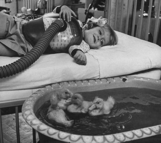 Πρωτοποριακή ιατρική μέθοδος της εποχής συμπεριελάμβανε την παρουσία ζώων ως μέρους της θεραπευτικής διαδικασίας. 1956.