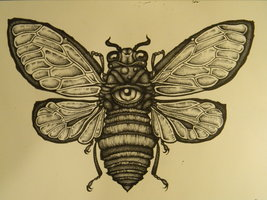 cicada__outline_and_stippling__by_the_serpents_egg-d5jp4nn