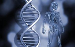 Επιγενετική και ασθένειες: Είμαστε ό,τι... έπαθαν οι πρόγονοί μας;