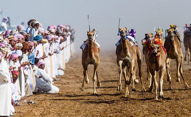 Φωτογραφία του Jason Edwards. Αγώνες με καμήλες