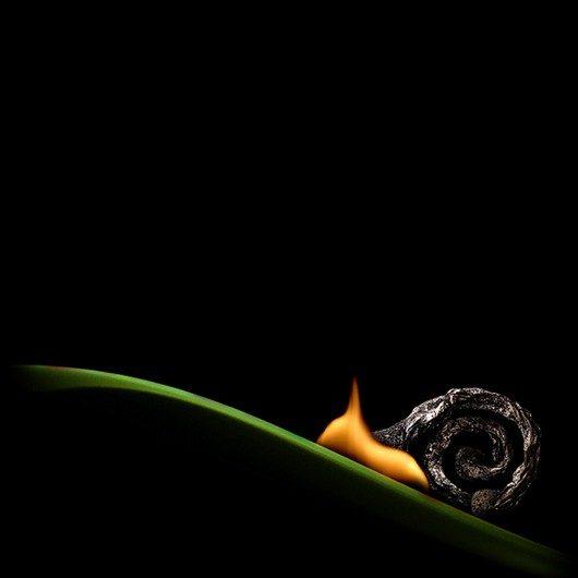 burning-burnt-match-art-photos4