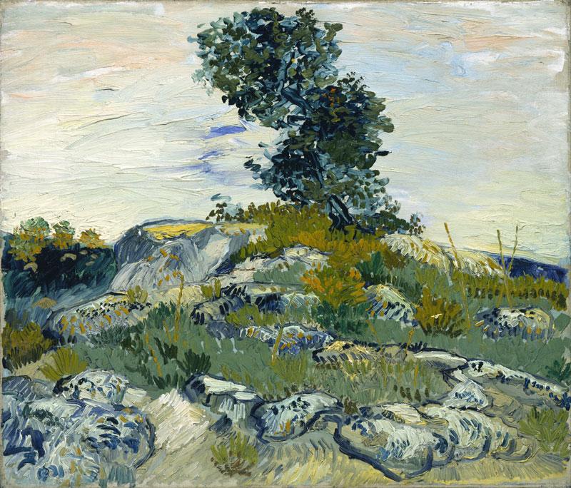 The Rocks – 1888