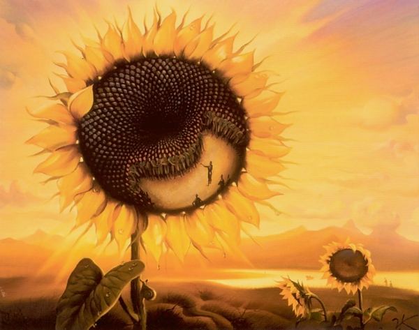 Vladamir-Kush-Sunflower-Seeds