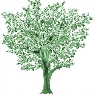 money_tree_color