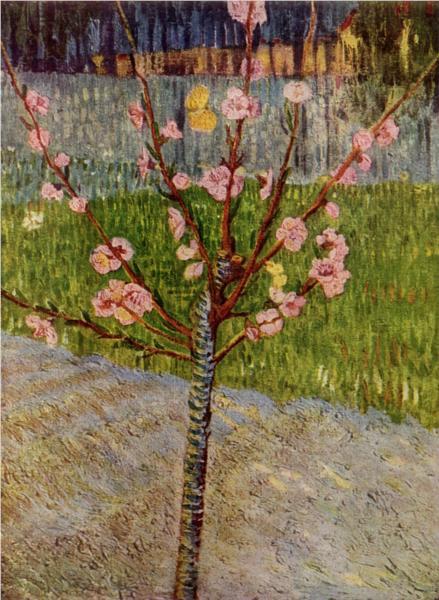 ανθισμένη αμυγδαλιά Vincent van Gogh, 1888