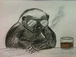 honey_badger_don__t_care_by_lennonscented-d3cyuup