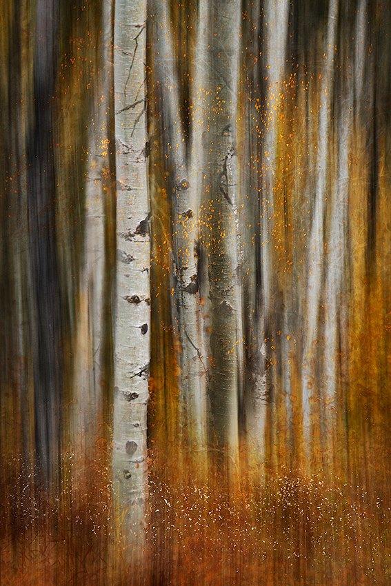 ursula-abresch-02-11-2012
