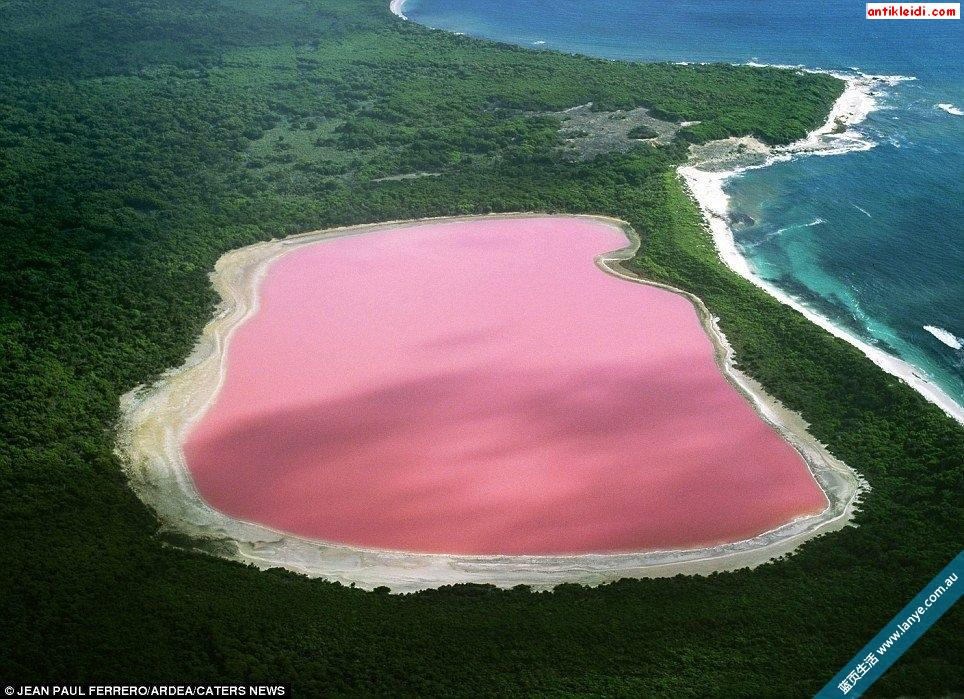 Hutt Lagoon.pg