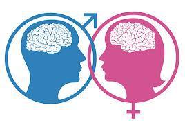 men-vs-women-brain