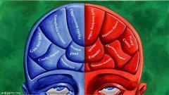 political-brain