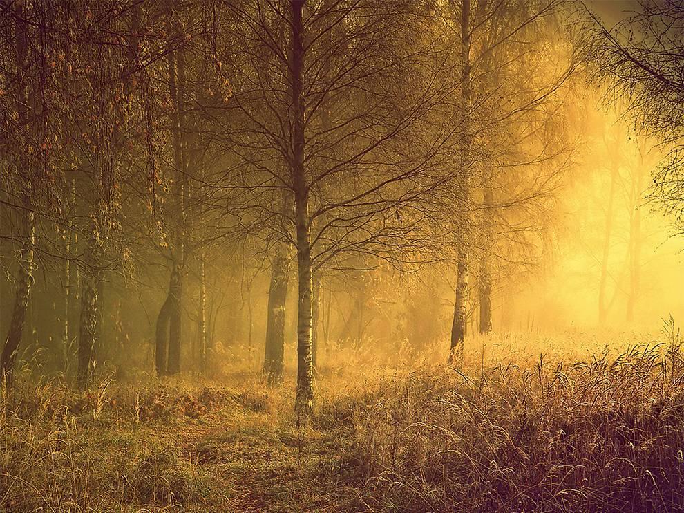 Φθινοπωρινό τοπίο στη Λιθουανία. (@Regina)