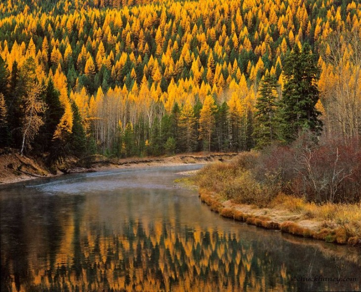 colorful-fall-photos-autumn-mcdonald-creek