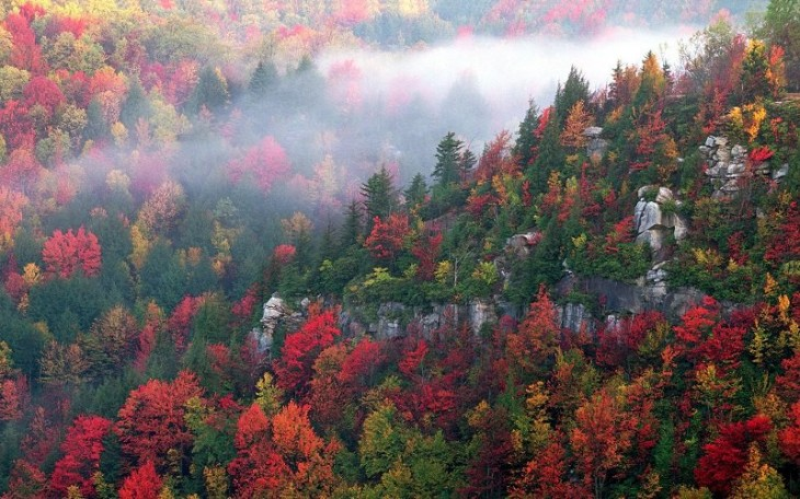 colorful-fall-photos-blackwater-canyon