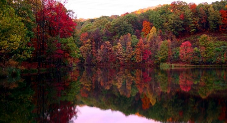 colorful-fall-photos-colorful-trees