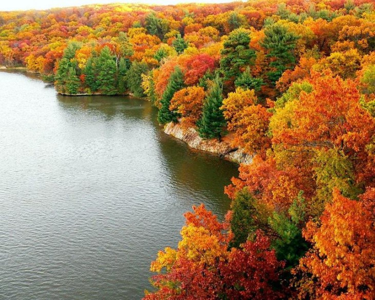 colorful-fall-photos-fall-trees