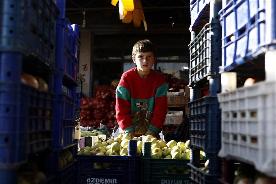 Ο δεκάχρονος πρόσφυγας Μαχμούντ Σεσό φωτογραφίζεται εν ώρα εργασίας, σε λαχαναγορά του Σουρούτς. Αμείβεται με 3-5 τουρκικές λίρες την ημέρα (1 - 1,7 ευρώ). Ο Μαχμούντ και ο αδερφός του εργάζονται για να βοηθήσουν την οικογένειά τους που έχει εγκαταλείψει το Κομπάνι και ζει πια στον προσφυγικό καταυλισμό του Σουρούτς.