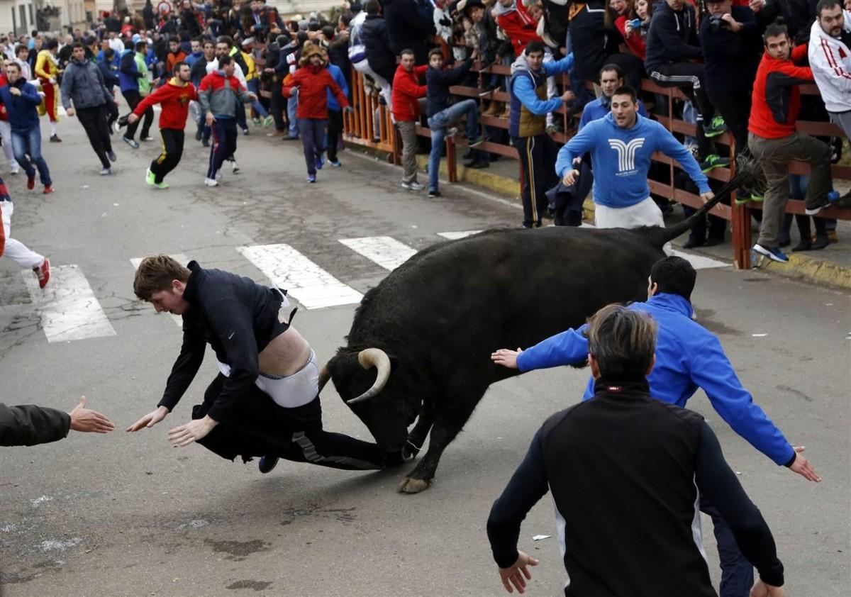 Στην εντατική νοσηλεύτηκε ένας 20χρονος Αμερικανός ύστερα από άγρια επίθεση που δέχθηκε από μαινόμενο ταύρο στο Carnaval del Toro στην Ισπανία κατά τη διάρκεια του φετινού φεστιβάλ ταυρομαχίας.