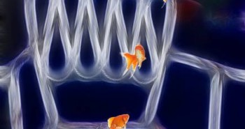 Electric-Chair-with-Gold-Fish_art