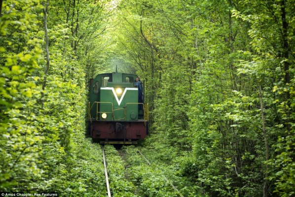 Tunnel-of-Love-Klevan-Ukraine-5-598x400