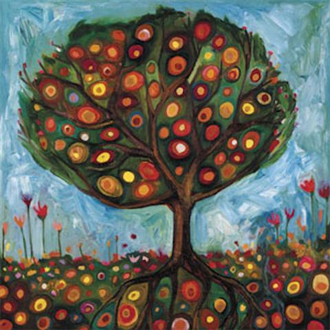 daisy-pomegranate-tree
