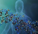 Τα γονίδια της εξαπάτησης και της συνεργασίας σε μια εξελισσόμενη κοινωνία