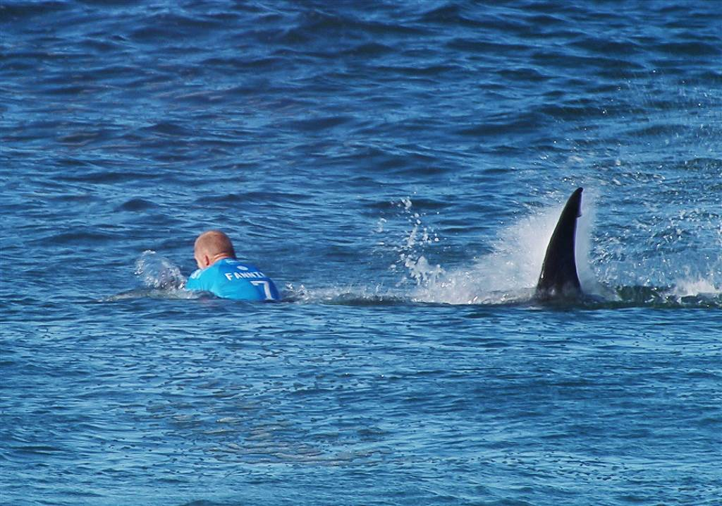 O Αυστραλός επαγγελματίας surfer Mick Fanning έζησε μία πολύ δύσκολη στιγμή όταν του επιτέθηκε ένας καρχαρίας στους αγώνες J-Bay Open που έγιναν στη Νότια Αφρική. Την δραματική στιγμή κατέγραψαν οι τηλεοπτικές κάμερες, με τον πρωταθλητή ASP World Tour τις χρονιές 2007, 2009 και 2013, να βρίσκεται για λίγη ώρα κάτω από την επιφάνεια της θάλασσας. Ο Fanning είπε πως αισθάνθηκε κάτι πίσω του και μέχρι να γυρίσει να κοιτάξει, ο καρχαρίας τον τράβηξε κάτω από την επιφάνεια της θάλασσας. Η μάχη ήταν σώμα με σώμα. Ευτυχώς για τον Fanning ο καρχαρίας τον άφησε ήσυχο και η βοήθεια από τις λέμβους έφτασε πολύ γρήγορα κοντά του.