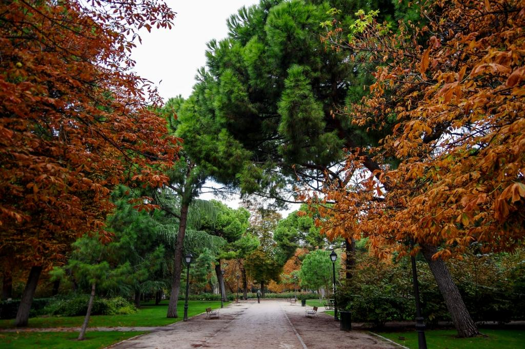 Retiro-Park-Madrid-Spain