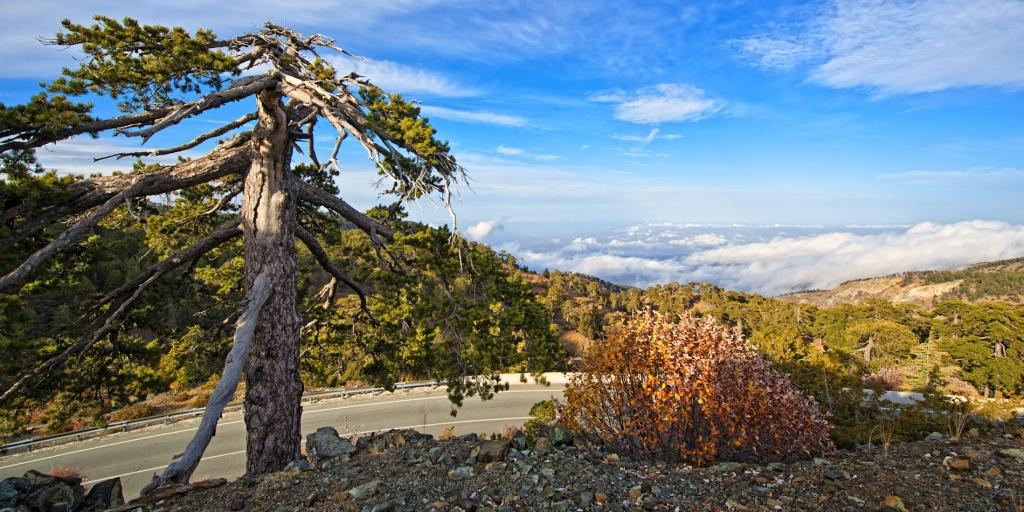 Troodos-Mountains-Cyprus