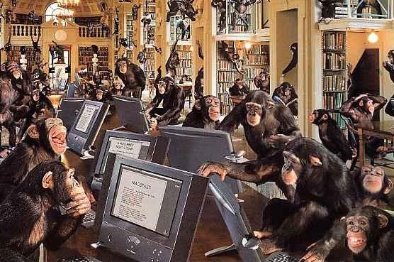monkeys-online
