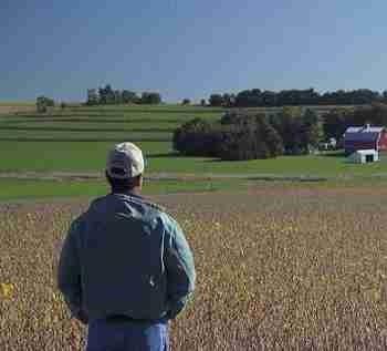Soybean-Farmer-06202012