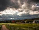 Ζώντας με αξιοπρέπεια· η συμβουλή ενός φιλελεύθερου γεωργού