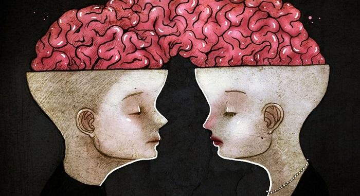 brainconnect