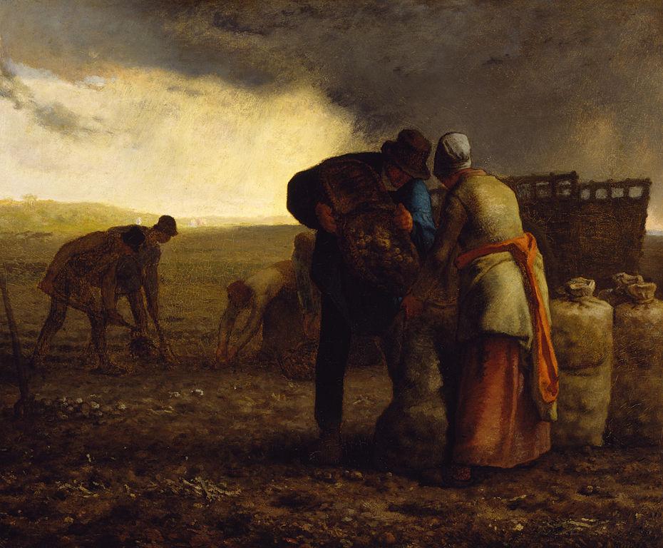 Jean-François Millet -Η συγκομιδή της πατάτας (έργο του 1855)