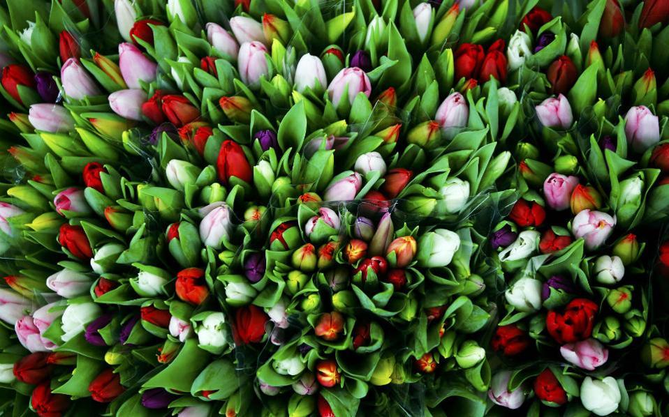 Πλησίασε η μέρα για την γιορτή των ερωτευμένων με την σφαγή των λουλουδιών και τις κατακόκκινες βιτρίνες. Άνδρες και αγόρια θα αγοράσουν λουλούδια, δώρα, κοσμήματα και σοκολατάκια, με τις γυναίκες και τα κορίτσια να ρωτούν πάντα «πόσο μ' αγαπάς» λες και έχει ποσοτική απάντηση το ερώτημα. REUTERS/Leonhard Foeger